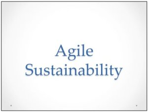 Agile Sustainability